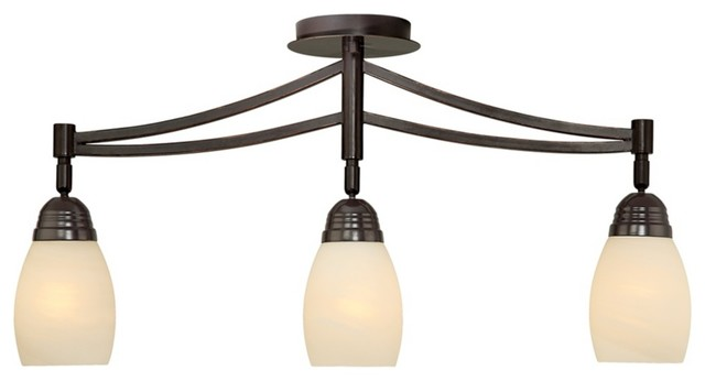 Pro Track Valmont Collection 3-Light Adjustable Fixture traditional-track-lighting-kits