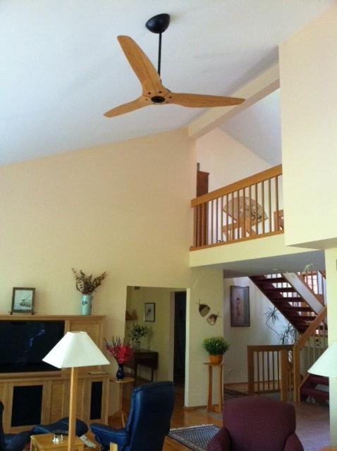 Haiku Ceiling Fans traditional-living-room