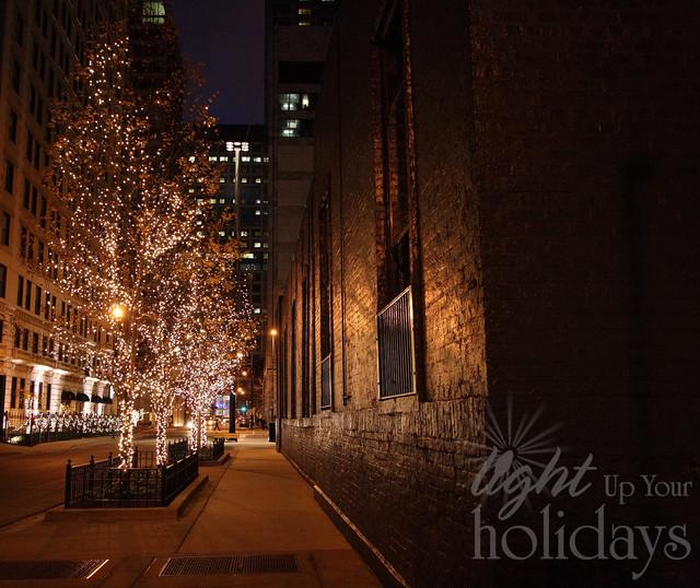 Light up the town - portfolio contemporary-landscape