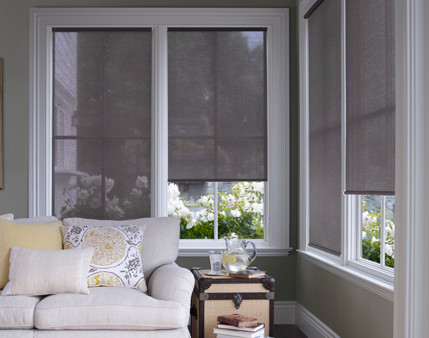 Solar shades modern roller shades raleigh by for Modern blinds for windows