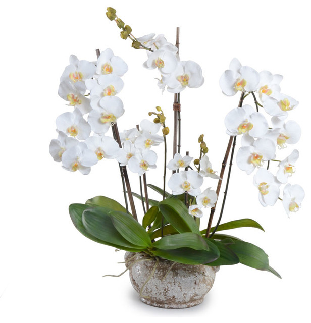White Phalaenopsis Orchid Arrangement - Traditional - Artificial Flower Arrangements - by New ...
