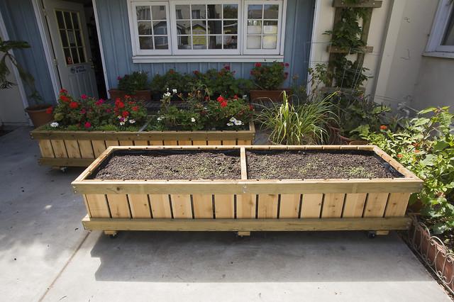 Contemporary Outdoor Planters contemporary-outdoor-planters