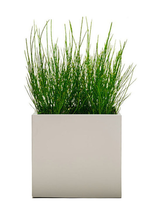 Modern Planter - Modern Cube Planter - Dove, Large - Made with maintenance of plants in mind, the perfect / low profile edge allows for easy removal of oversized plants without catching or damaging the root ball when in need of trimming. Our Dove color is a light powder coated matte grey finish.