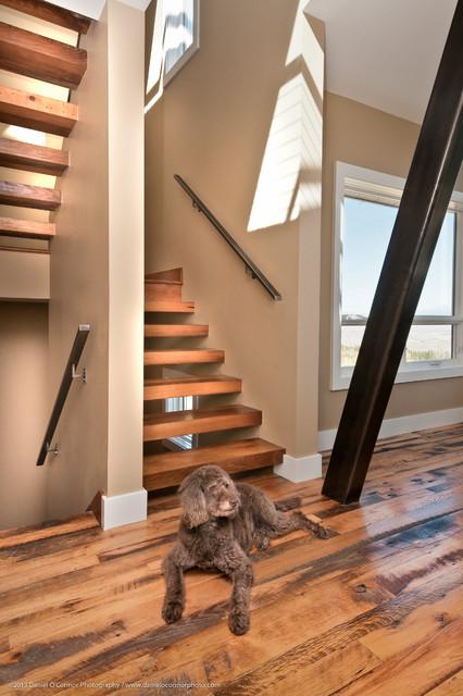 """""""Modern Cabin"""", Colorado Style contemporary"""