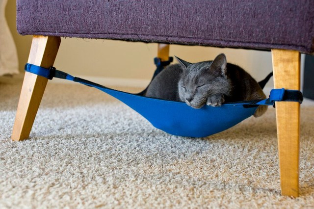 Kitty Cradle Cat Hammock contemporary pet accessories
