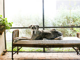 eclectic You Said It: 'Slow Down and Recharge' and More Houzz Quotables (8 photos)