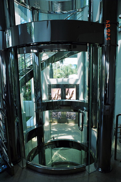 Glass Staircases, treads, landings tropical