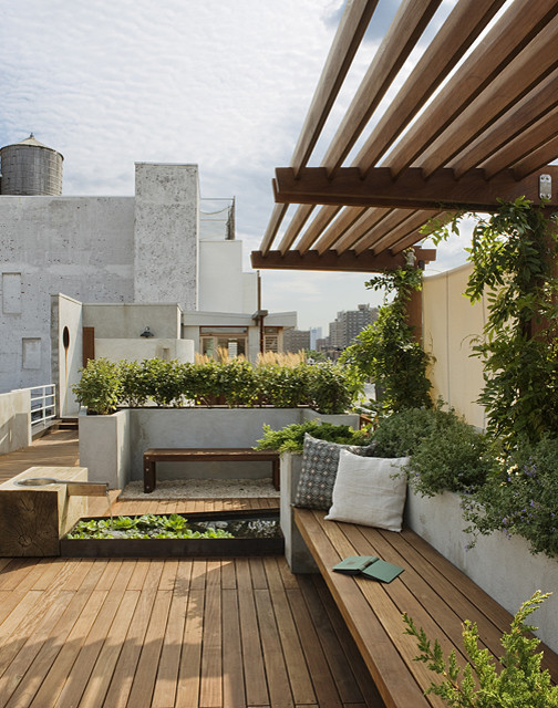 East Village Roof Garden View Towards Penthouse modern-landscape