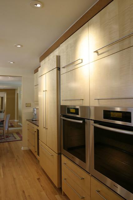 Contemporary Kitchen Designs contemporary-kitchen