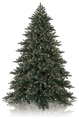 Balsam Hill California Baby Redwood™ Artificial Christmas Tree traditional-christmas-trees
