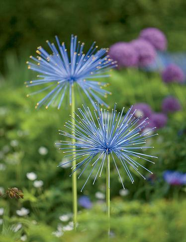 Eclectic Garden Sculptures by Gardener's Supply Company