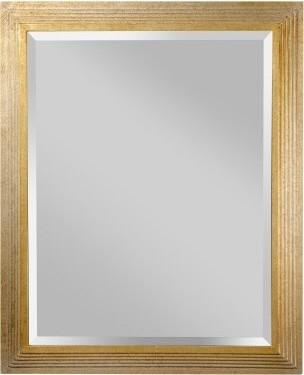 Darwin Gold & Silver Mirror - 26.625W x 32.75H in. modern-mirrors