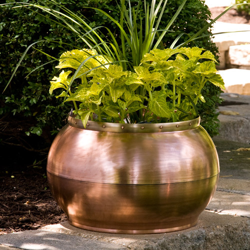 Copper bowl planter with decorative band contemporary for Decorative outdoor pots