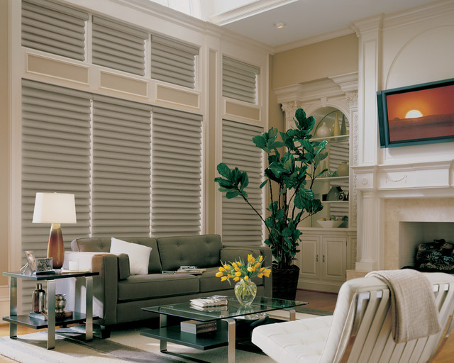Vignette® Traditional™ Modern Roman Shades PowerRise® 2.1 with Platinum™ Techno eclectic-roman-shades