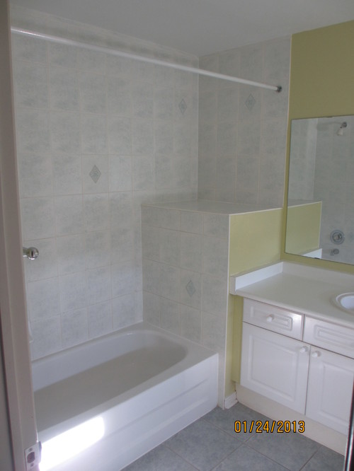 lisa 39 s new main bathroom with walk in shower vs tub