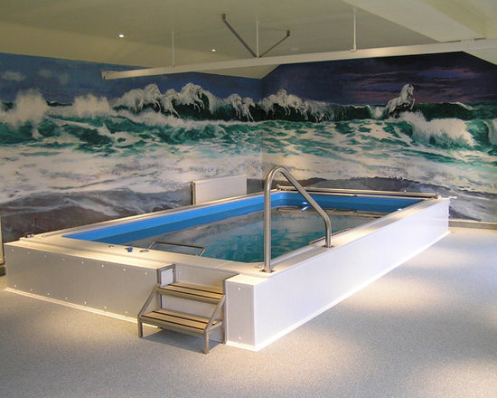 Original Endless Pools® - This fanciful mural creates a suitably vibrant environment for an Endless Pool; the cresting ocean waves echo the Pool's powerful swim current. The room's clean lines and white tones let the waters - both real and painted - dominate.