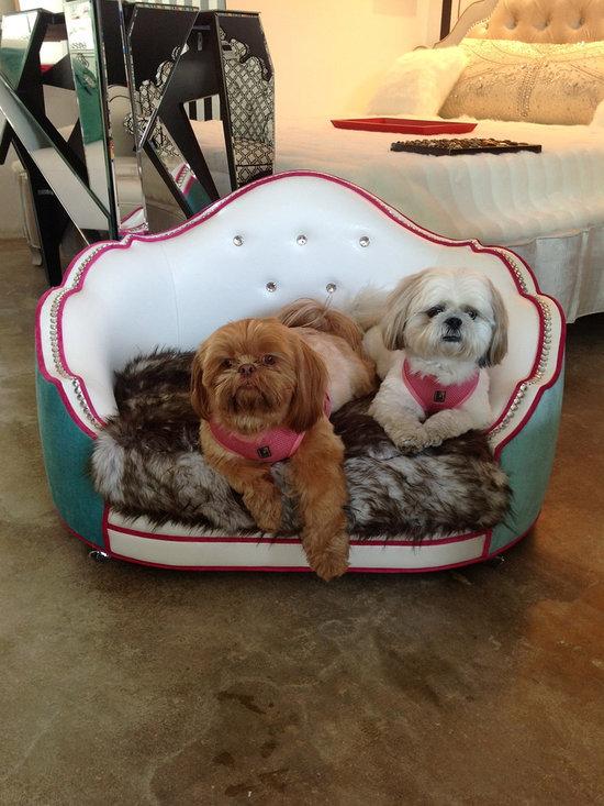 Doggie beds -