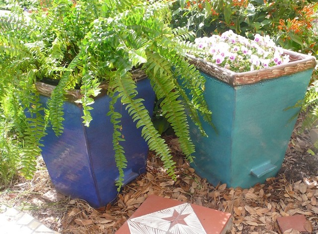 Ceramic Planter Eclectic Landscape Austin By Clayworks