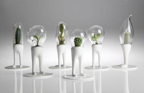Domsai Terrarium By Matteo Cibic modern indoor pots and planters