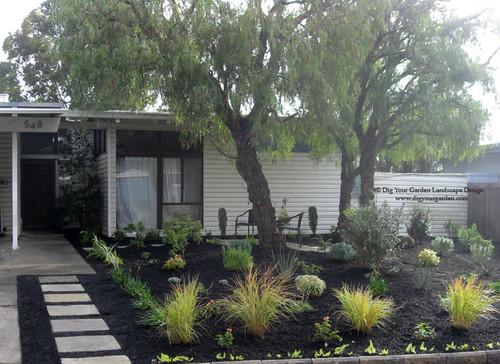 Mid century Front Garden Transformation in Northern California