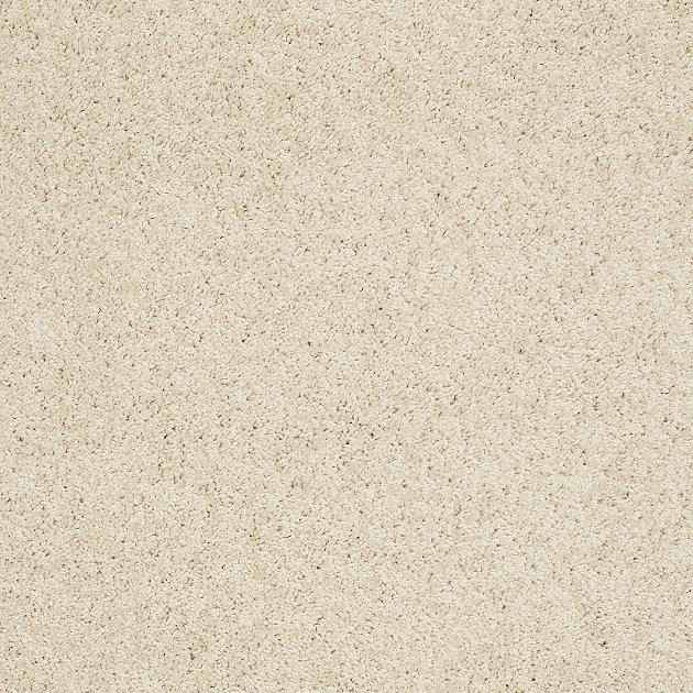Floor Carpet Rug