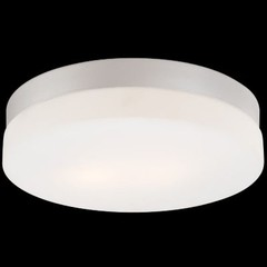Disc Ceiling/Wall Light by Alico