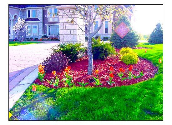 Spring & Fall Landscaping-Adding Color to your Gardens