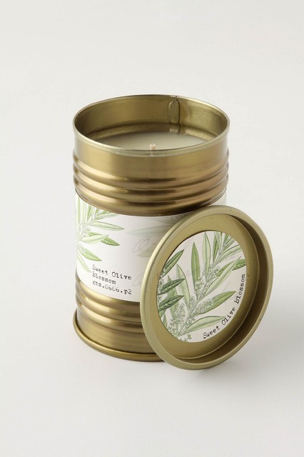 Illume Good Nature Tin, Sweet Olive Blossom contemporary-candles-and-candleholders
