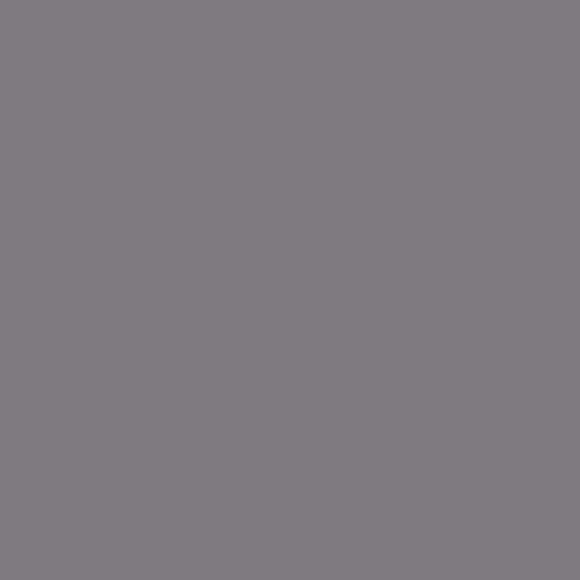 Sw 6277 Special Gray By Sherwin Williams Traditional Paint