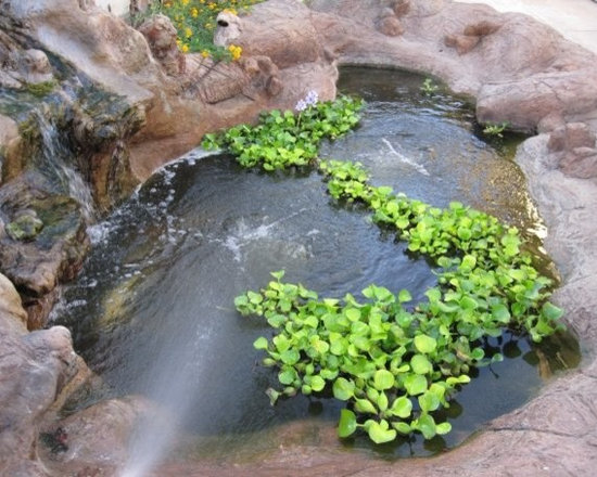 TransBLOCK Structure Form Systems | Koi Pond -