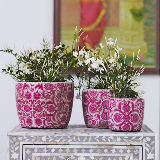 Vintaged Rose Plant Pots contemporary indoor pots and planters