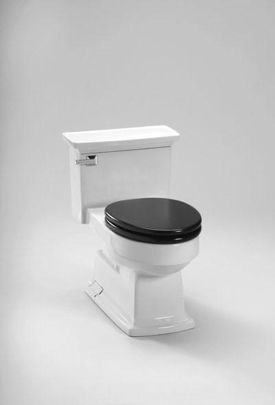 Toto Lloyd Toilet modern-toilets