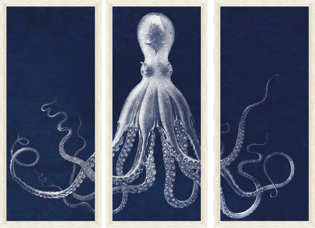 Lord Bodner's Octopus Study Triptych Print modern-artwork