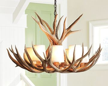 Stag Chandelier traditional-chandeliers