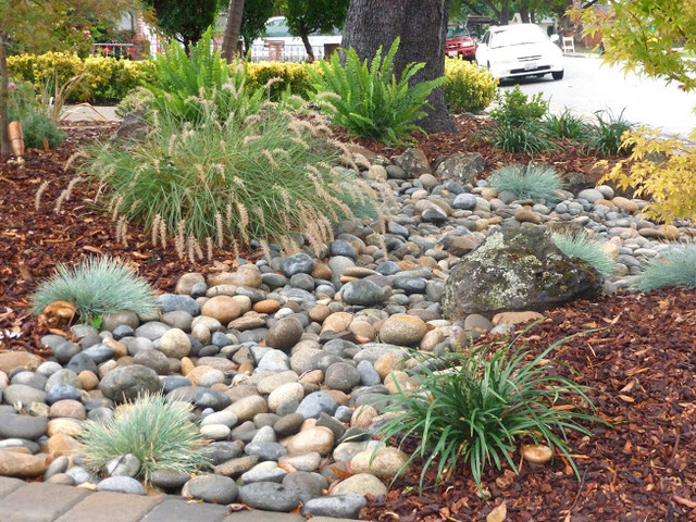 Low water gardens traditional landscape san for Low water landscaping plants