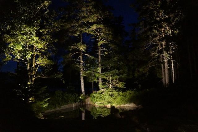 Moonlighting outdoor lighting