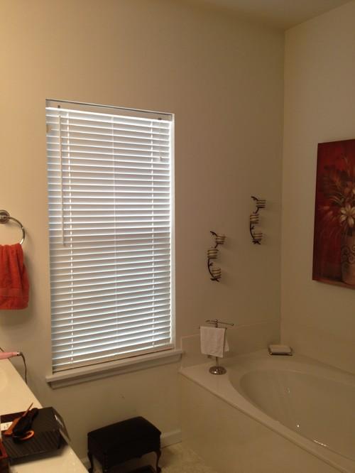 Bathroom Window Treatment Help