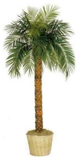 7' Tall Phoenix Palm Tree tropical-artificial-flowers