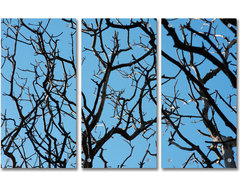 2Modern - Skyward Acrylic Panel modern-artwork
