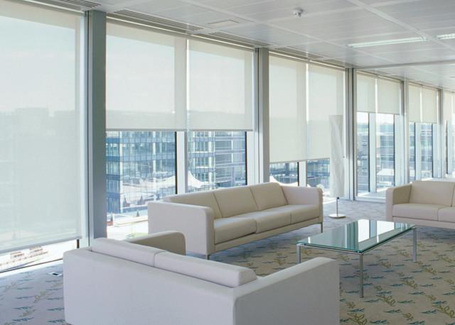 All Products / Floors, Windows & Doors / Window Treatments / Blinds ...