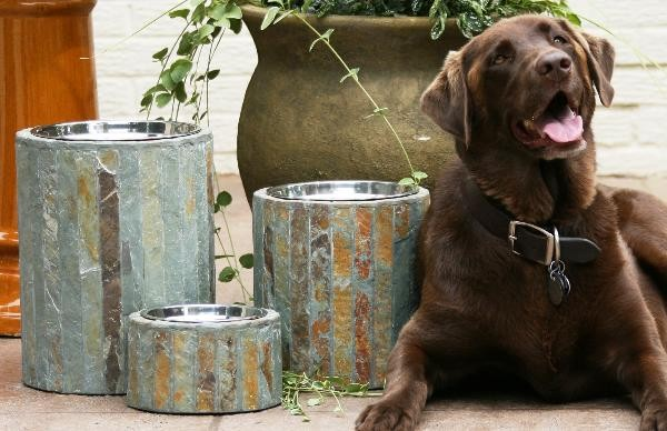 Set of Two Apsen Raised Dog Feeders  pet accessories
