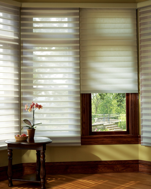Hunter douglas window fashions window blinds boston for Decor blinds and shades