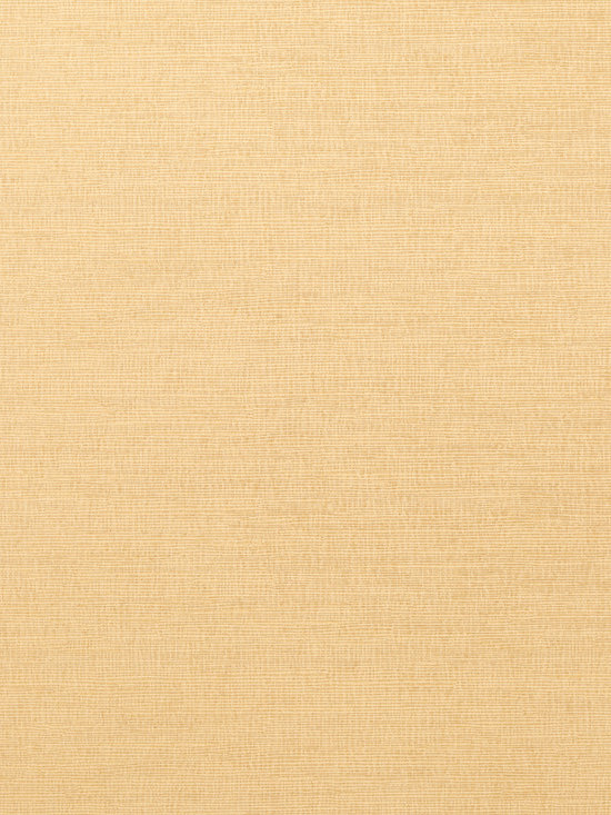 Texture Resource Volume 4 - Flat Shots - Coastal Sisal wallpaper in Straw (T14106) from Thibaut's Texture Resource Volume 4 Collection