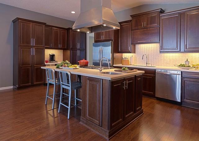 Julington Creek contemporary-kitchen