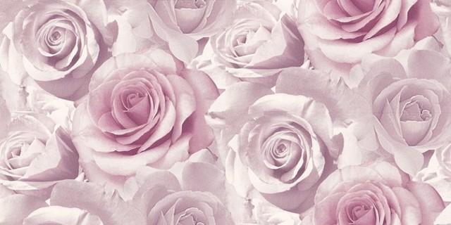 Roses wallpaper