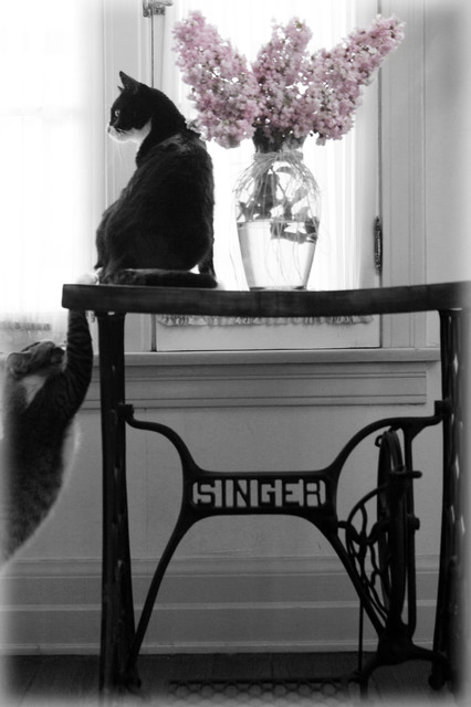 Little Furniture Lady: Antique Iron Singer Sewing Machine Table ...