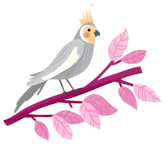 Charming Cockatiel Print by Small Talk Studio modern nursery decor