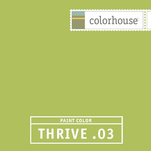 YOLO Colorhouse THRIVE .03  paints stains and glazes