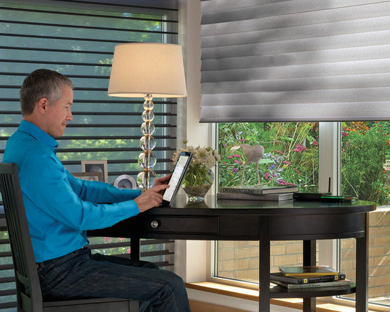 Child & Pet Safety - Hunter Douglas Canada - Silhouette Window Shadings w/ Powerrise are safe for children are pets with no lift cords and functionality is controlled by a remote, wall switch, or an ipad/iphone,.
