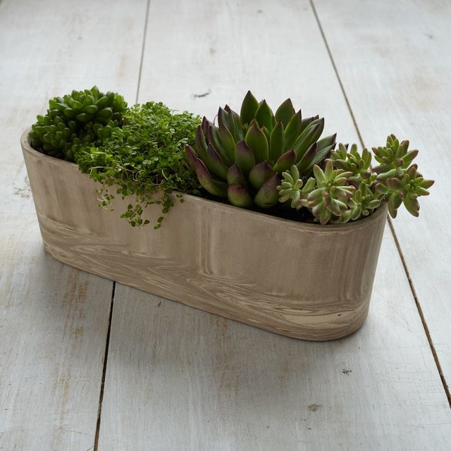 Marbleized Planter, Ledge traditional-outdoor-pots-and-planters